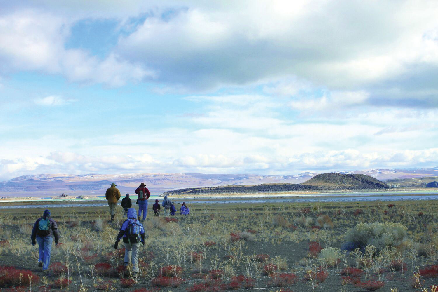 Staff field trip to land bridge connecting Negit Island with the mainland. Photo courtesy of the Mono Lake Committee